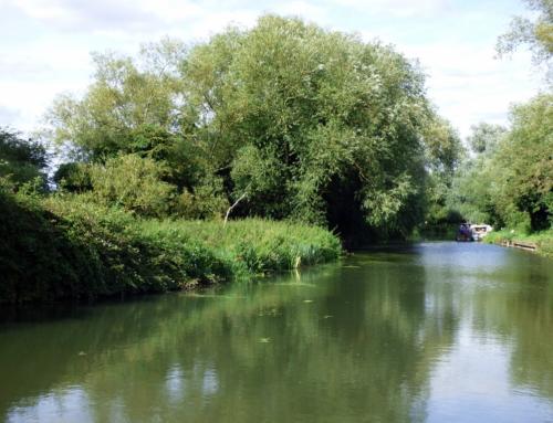 River Stort Crossings Info